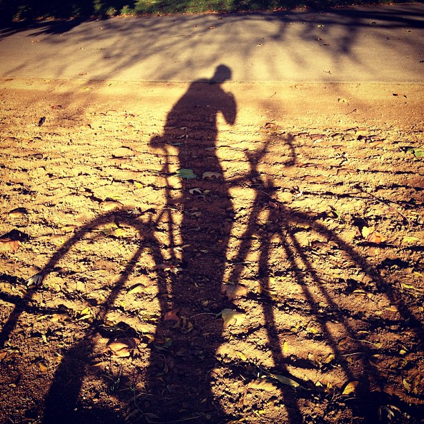 A shadow of a cyclist on a bicycle, taking a photo of themselves.