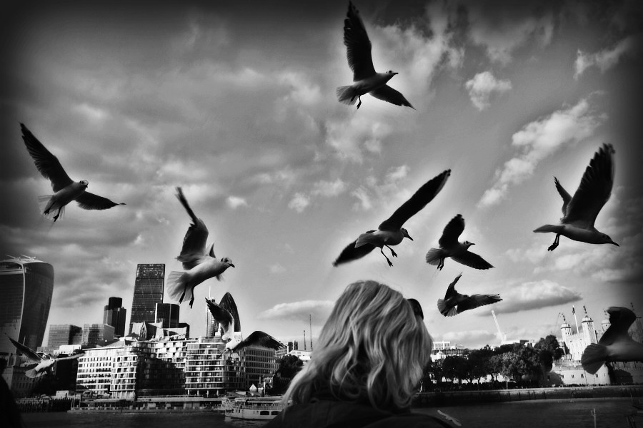 black and white photo of woman looking at birds in the sky in London